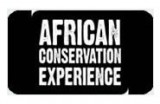African Conservation Experience